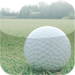 Golf Score Calculator